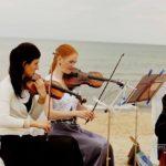 stīgas kāzās, vijole kāzās, čells kāzās