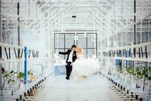 siltumnīca kāzās, Vinteri
