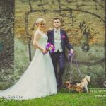suņi kāzās, kāzu fotosesija