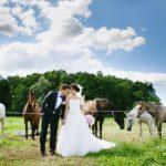 zirgi kāzu fotosesijā
