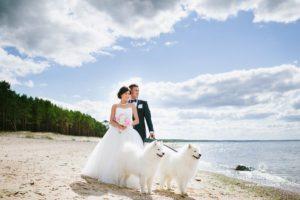 suņi kāzās, kāzu foto pie jūras
