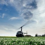 helikopters kāzās, Vinteru kāzas