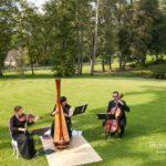 stīgu kvartets kāzās, arfa kāzās, dzīvā mūzika kāzas